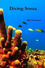 Diving Sosua by Bill Passmore