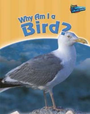 Why am I a Bird? by Greg Pyers