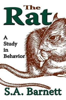 The Rat by S.A. Barnett