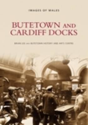 Butetown and Cardiff Docks by Brian Lee image