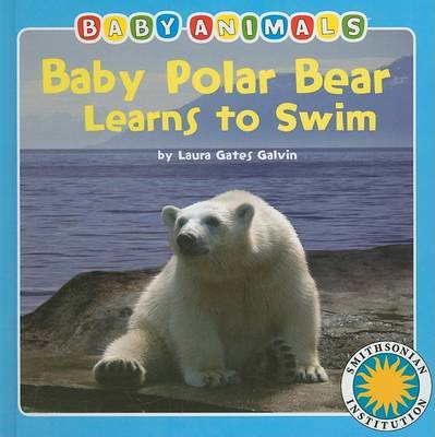 Baby Polar Bear Learns to Swim by Laura Gates Galvin image
