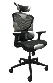 GT I-SEE Ergonomic Gaming & Office Chair - Black & Grey for