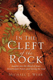 In the Cleft of the Rock by Michael J Webb