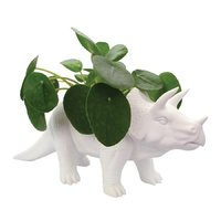 Bitten: Tricerapot Planter