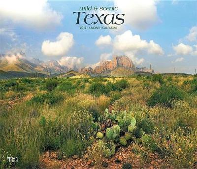 Texas Wild & Scenic 2019 Deluxe by Inc Browntrout Publishers