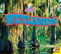 Wetlands by John Willis
