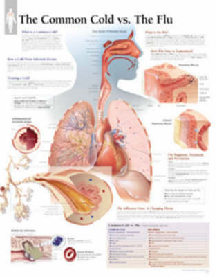 Common Cold Vs the Flu by Scientific Publishing