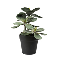 General Eclectic: Artificial Plant - Large Succulent