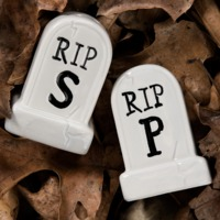 Sourpuss: Tombstone Salt & Pepper Shakers