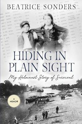 Hiding in Plain Sight by Beatrice Sonders image