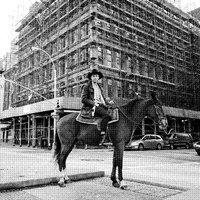 The Crystal Cowboy (2LP) by Drew Lustman