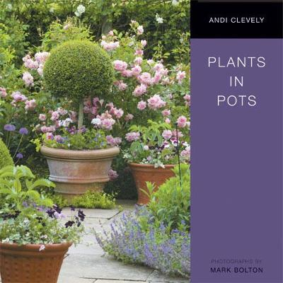 Plants in Pots image