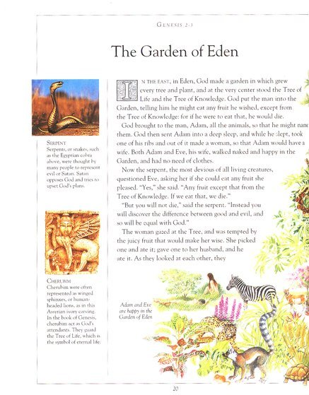 The Children's Illustrated Bible by Selina Hastings image