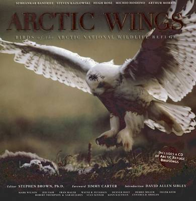 Arctic Wings: Birds of the Arctic National Wildlife Refuge image