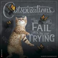 Catspirations 2020 Wall Calendar by Willow Creek Press image