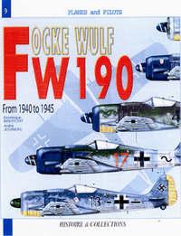Focke Wulf FW 190 by Dominique Breffort image