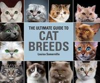 The Ultimate Guide To Cat Breeds by Louisa Somerville