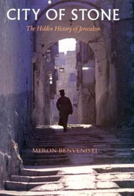 City of Stone by Meron Benvenisti