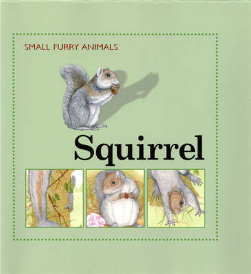 Squirrel by Ting Morris