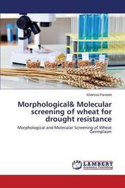 Morphological& Molecular Screening of Wheat for Drought Resistance by Parveen Khamsa