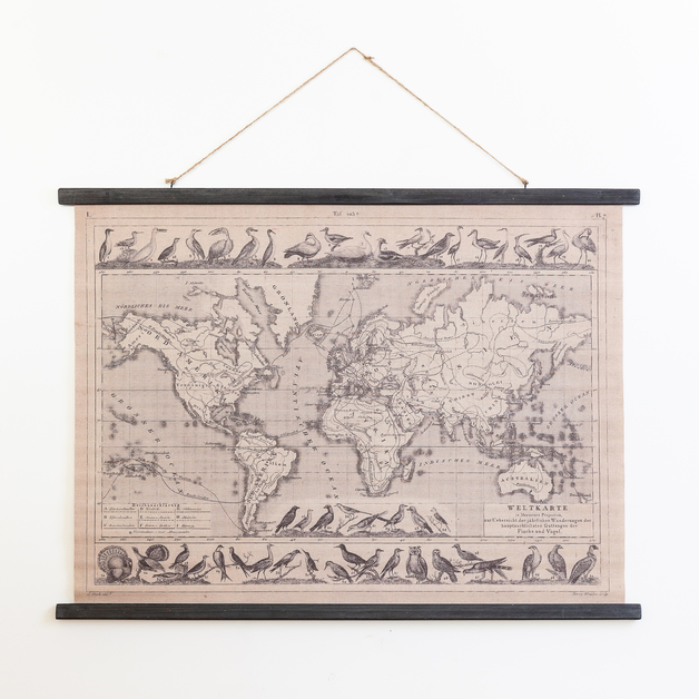World Map With Birds Print (102x22x24cm)