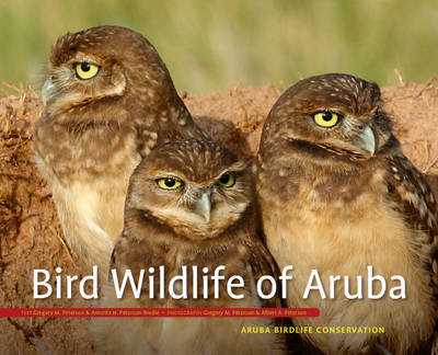 Bird Wildlife of Aruba by Gregory Peterson