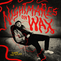 Shape the Future (2LP + DL) by Nightmares On Wax