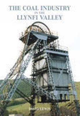 The Llynfi Valley Coal Industry by David Lewis