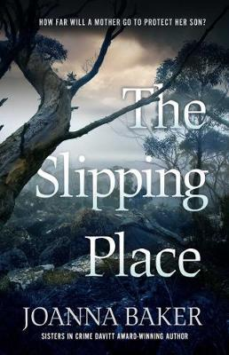 The Slipping Place by Joanna Baker image