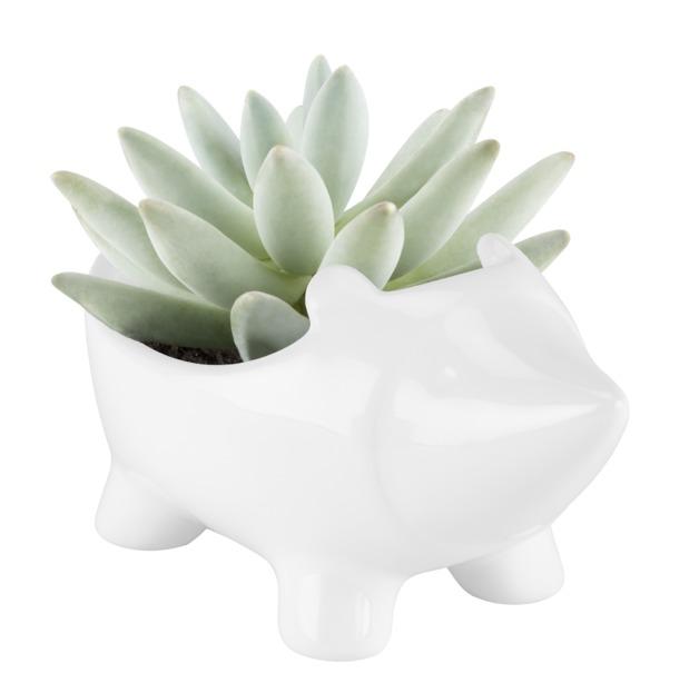 TrueZoo: Hedgehog Planter- White
