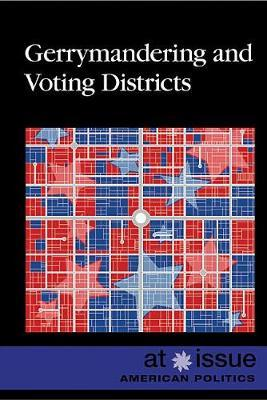 Gerrymandering and Voting Districts image