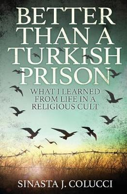 Better Than a Turkish Prison by Sinasta J Colucci