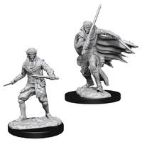 Pathfinder Deep Cuts: Unpainted Miniatures - Male Elf Rogue image