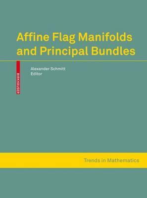 Affine Flag Manifolds and Principal Bundles image