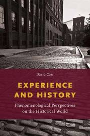 Experience and History by David Carr