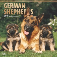 German Shepherds 2018 Square Wall Calendar by Inc Browntrout Publishers