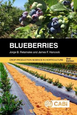 Blueberries by Jorge Retamales