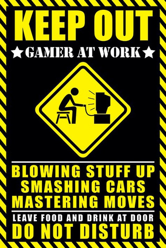 Keep Out Gamer at Work Wall Poster (182)