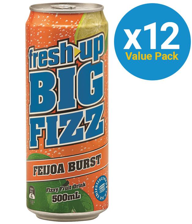 Fresh Up Big Fizz Feijoa Burst 500ml (12 Pack)