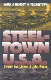 Steeltown U.S.A. by Sherry Lee Linkon