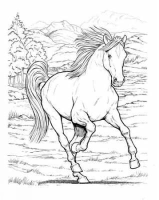 Wonderful World of Horses Coloring Book by John Green image