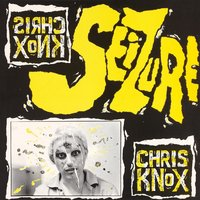 Seizure (LP) by Chris Knox image