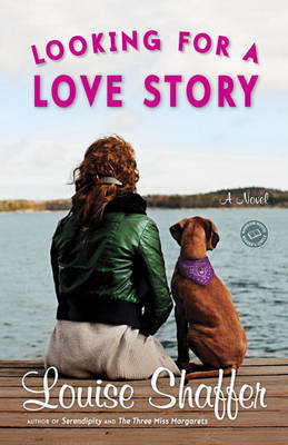 Looking for a Love Story by Louise Shaffer image