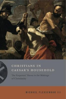 Christians in Caesar's Household by Michael Flexsenhar III
