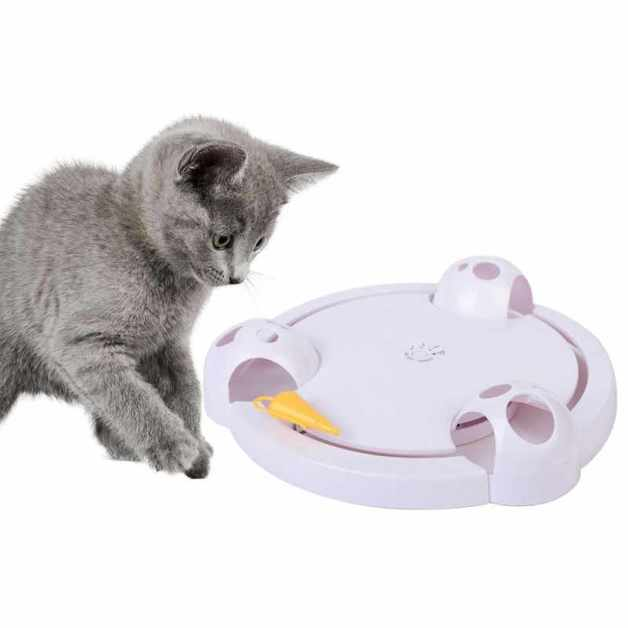Dougez Electric Interactive Cat & Mouse Toy