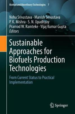 Sustainable Approaches for Biofuels Production Technologies image