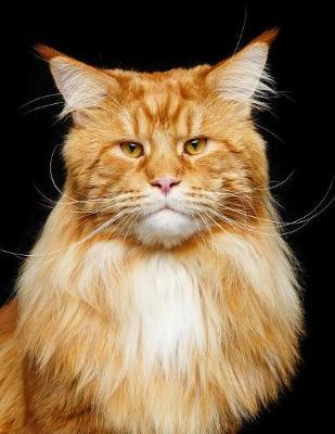 Maine Coon by Notebooks Journals Xlpress