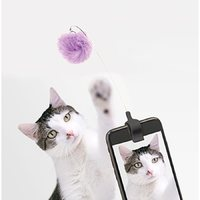 Kitty Phone Clip (Assorted)