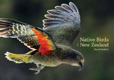 Native Birds of New Zealand by David Hallett