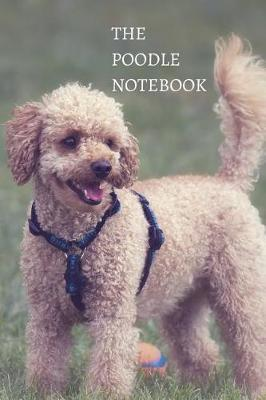 The Poodle Notebook by Labgang Publications